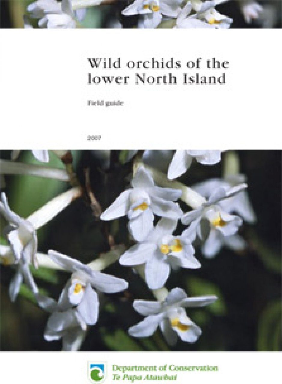 Wild Orchids of the Lower North Island