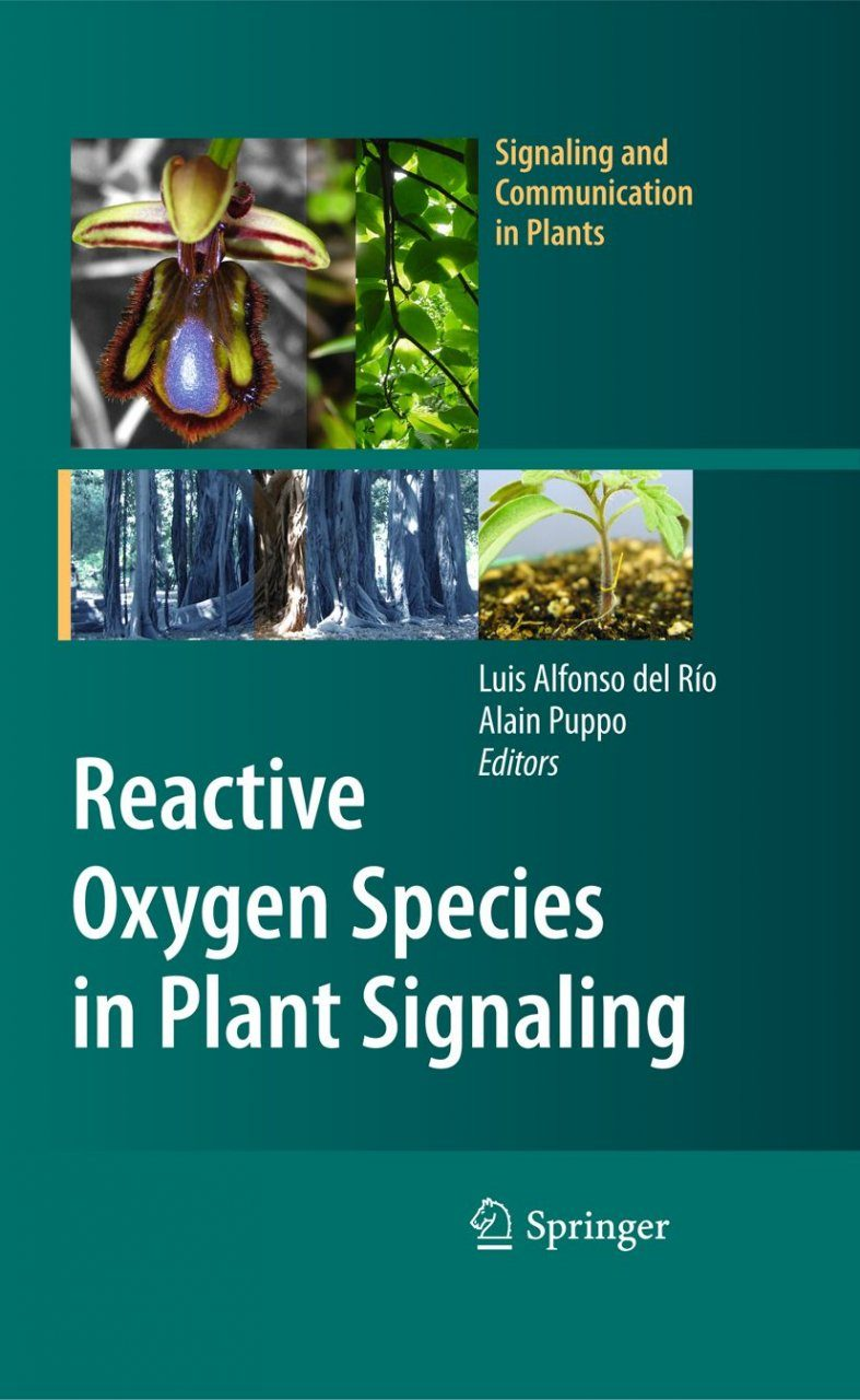 Reactive Oxygen Species in Plant Signaling