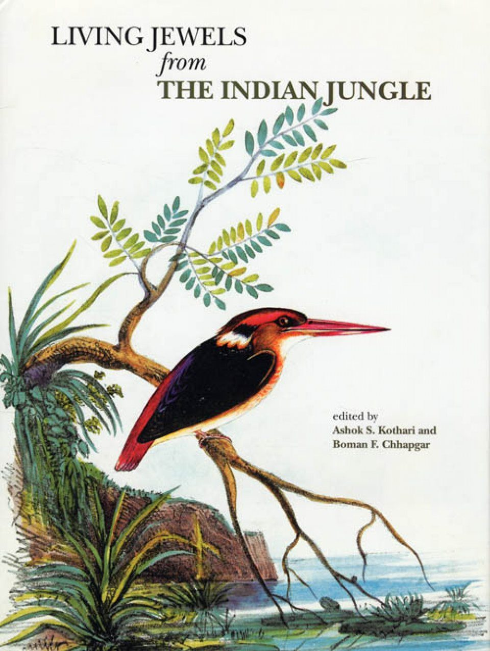 Living Jewels from the Indian Jungle