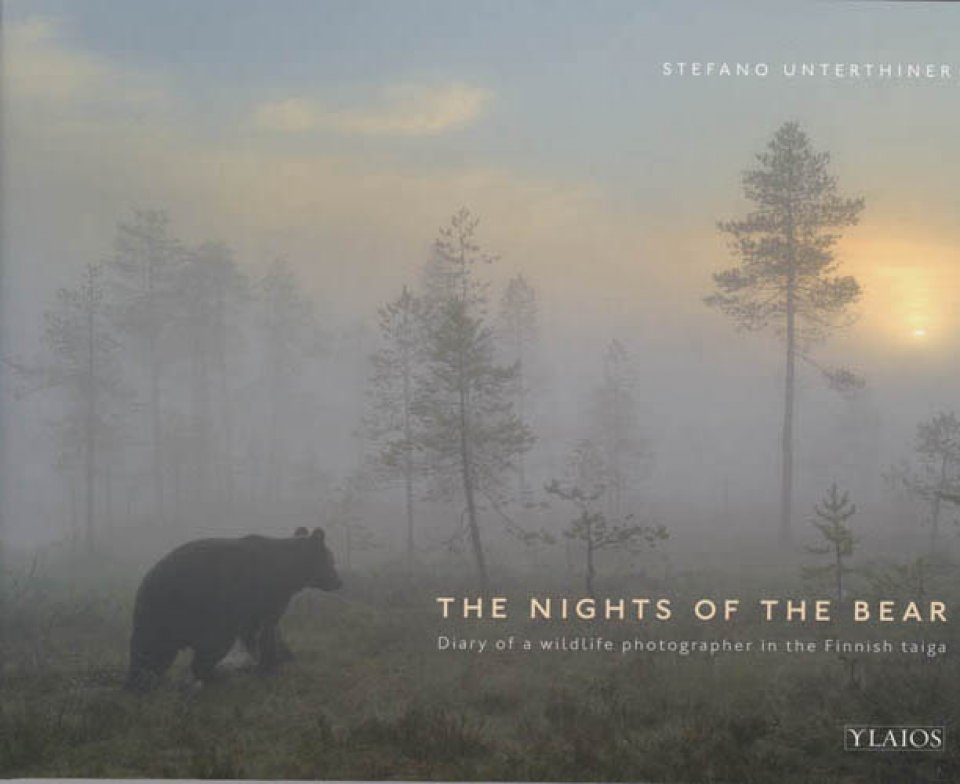 The Nights of the Bear