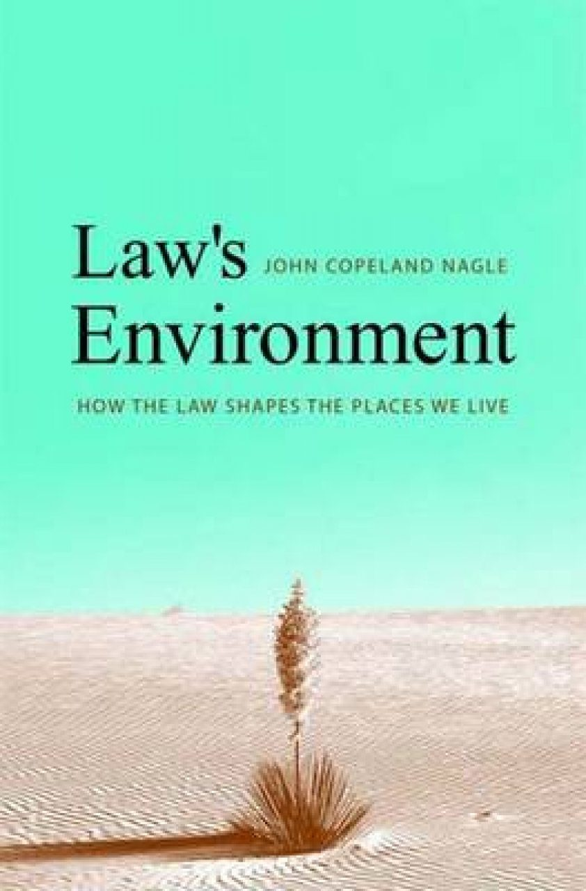 Law's Environment