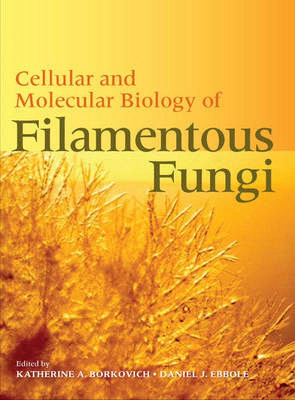 Cellular and Molecular Biology of Filamentous Fungi
