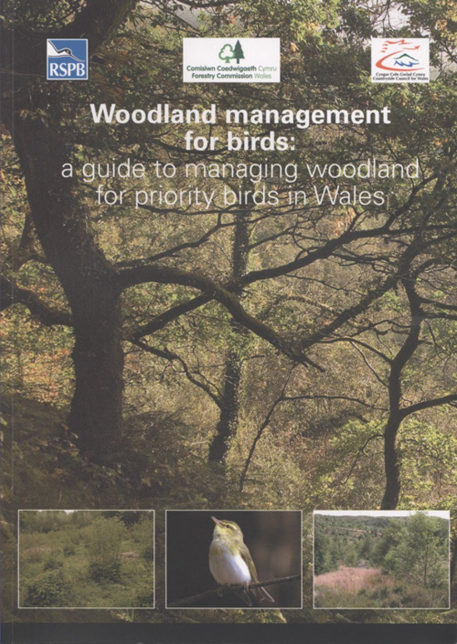Woodland Management for Birds: A Guide to Managing Woodland for Priority Birds in Wales [English / Welsh]