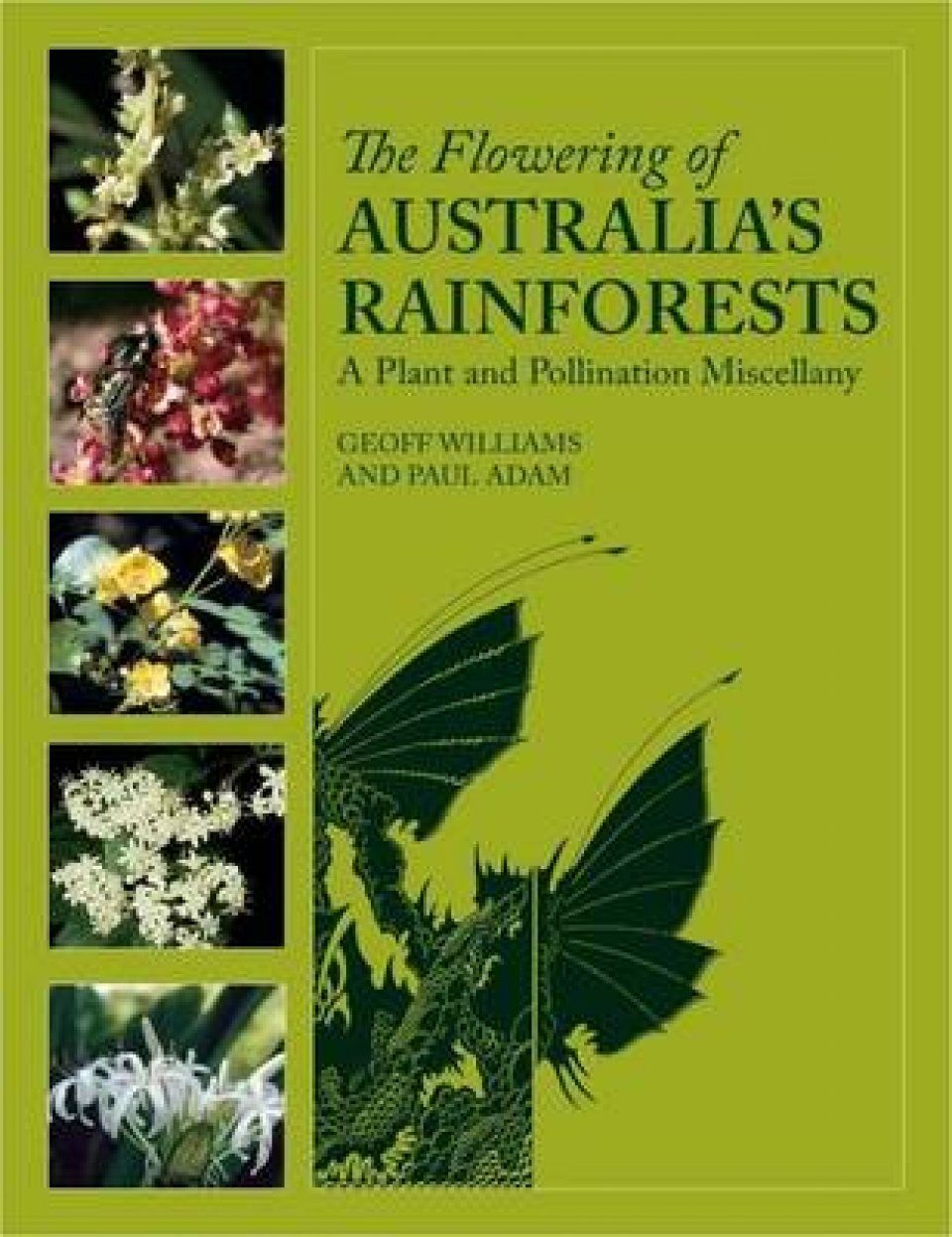The Flowering of Australia's Rainforests