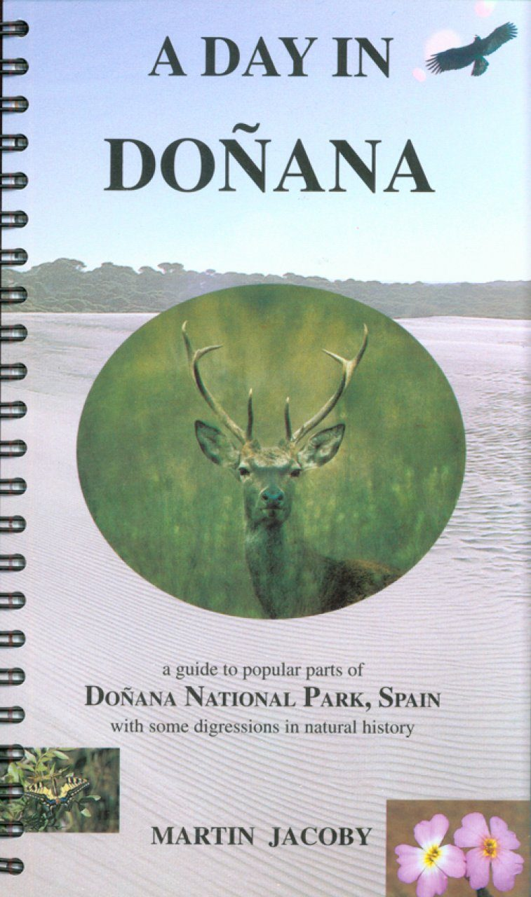 A Day in Doñana