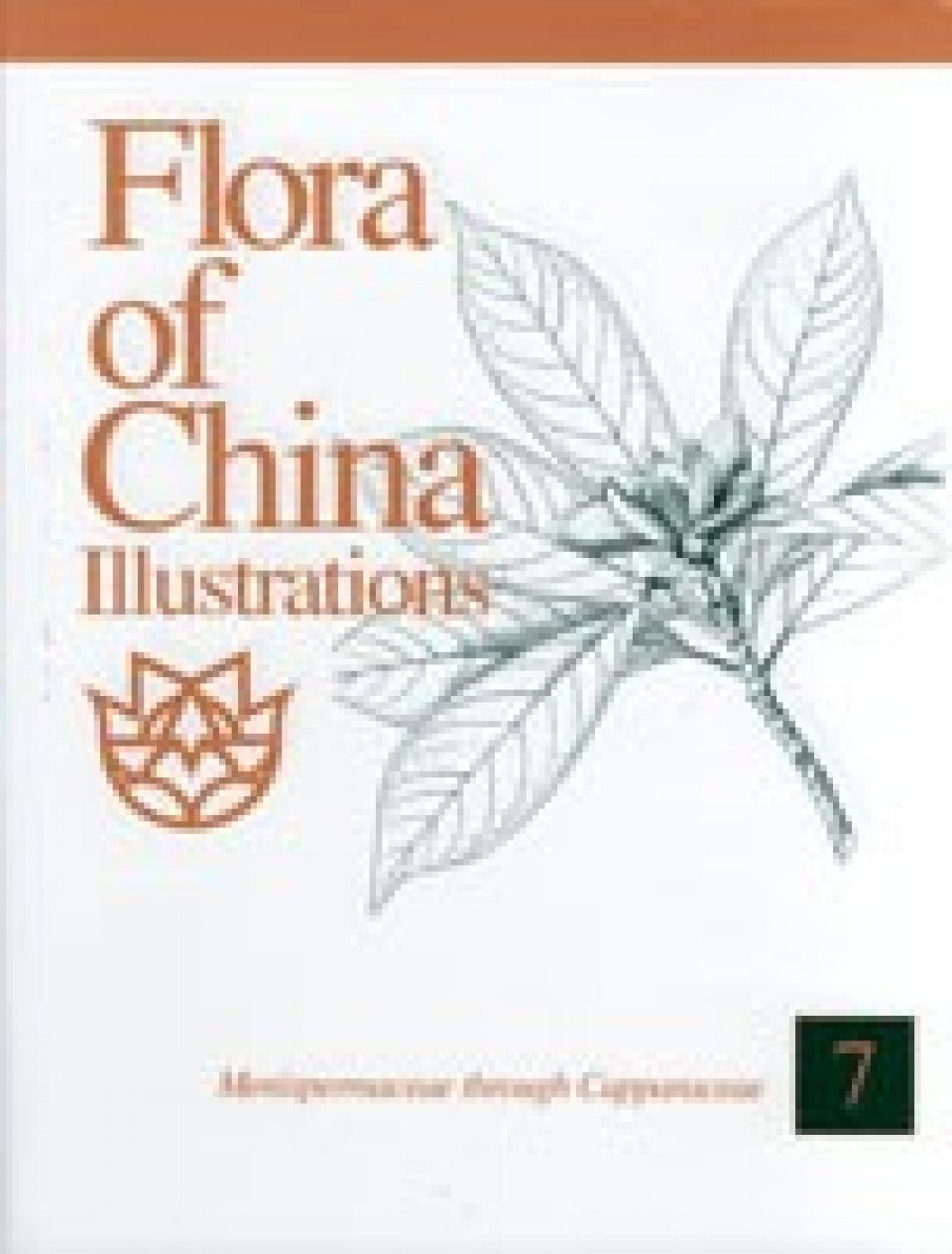 Flora of China Illustrations, Volume 7