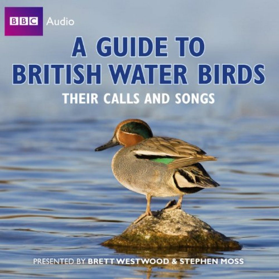 A Guide to British Water Birds