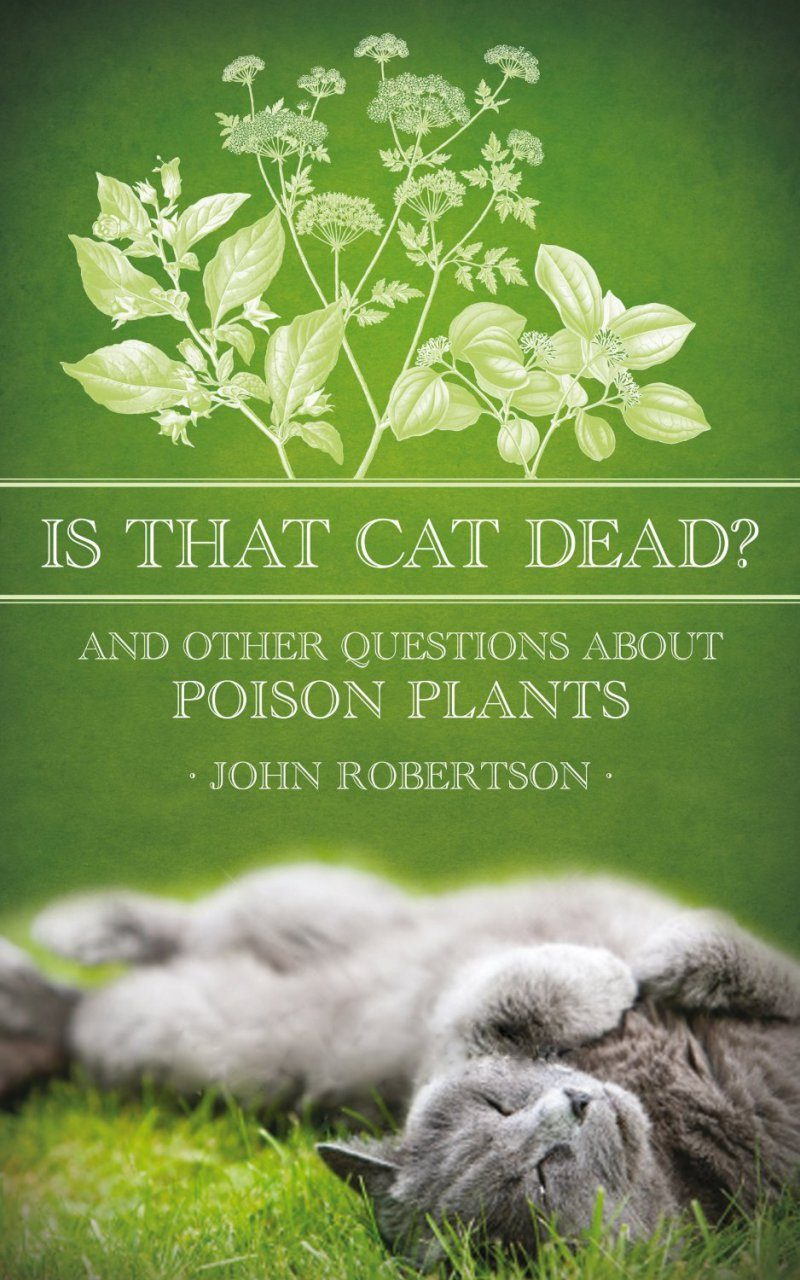 Is That Cat Dead?