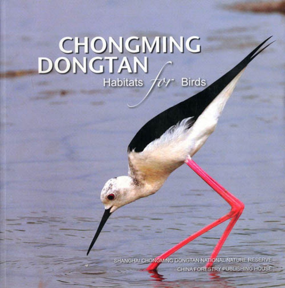 Chongming Dongtan Habitats for Birds