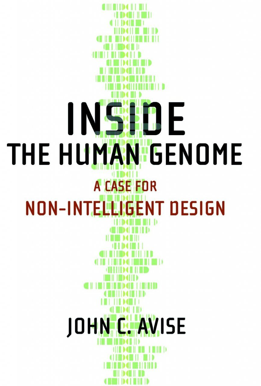 Inside the Human Genome