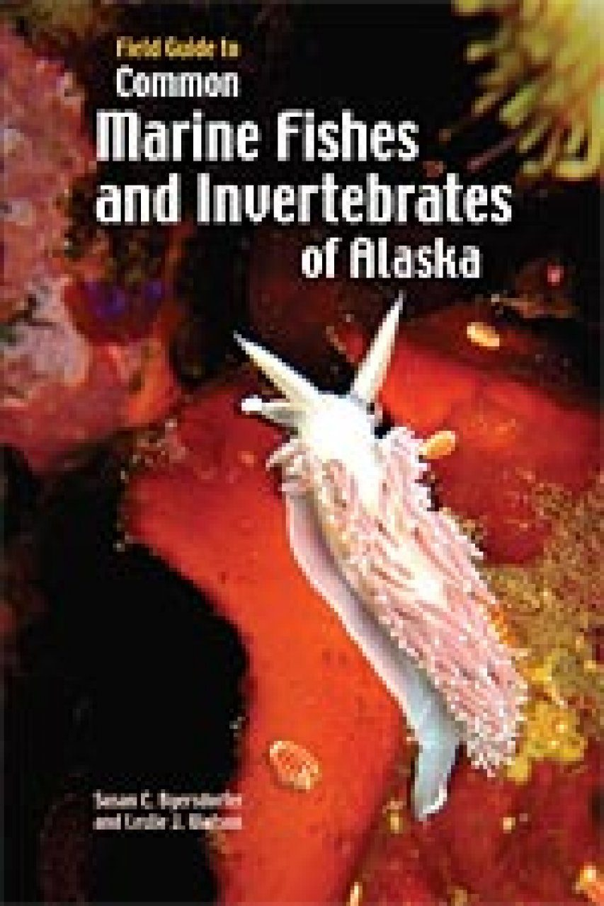 Field Guide to Common Marine Fishes and Invertebrates of Alaska