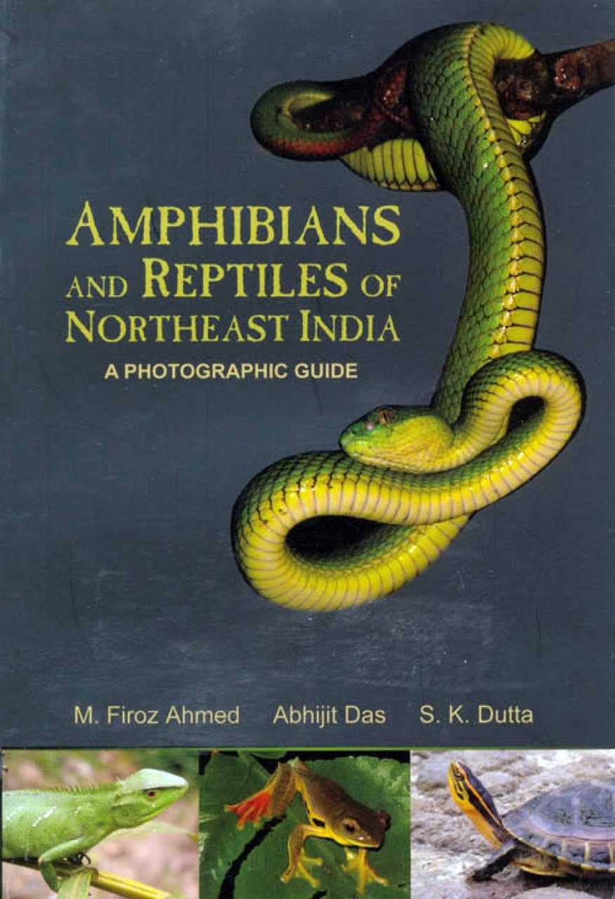 Amphibians and Reptiles of Northeast India