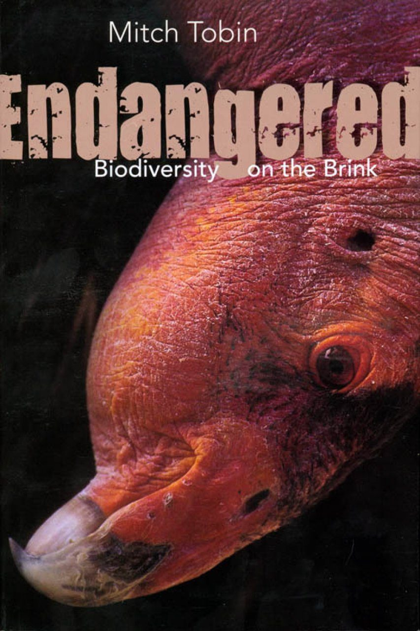 Endangered: Biodiversity on the Brink