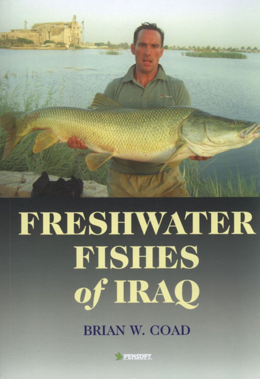 Freshwater Fishes of Iraq