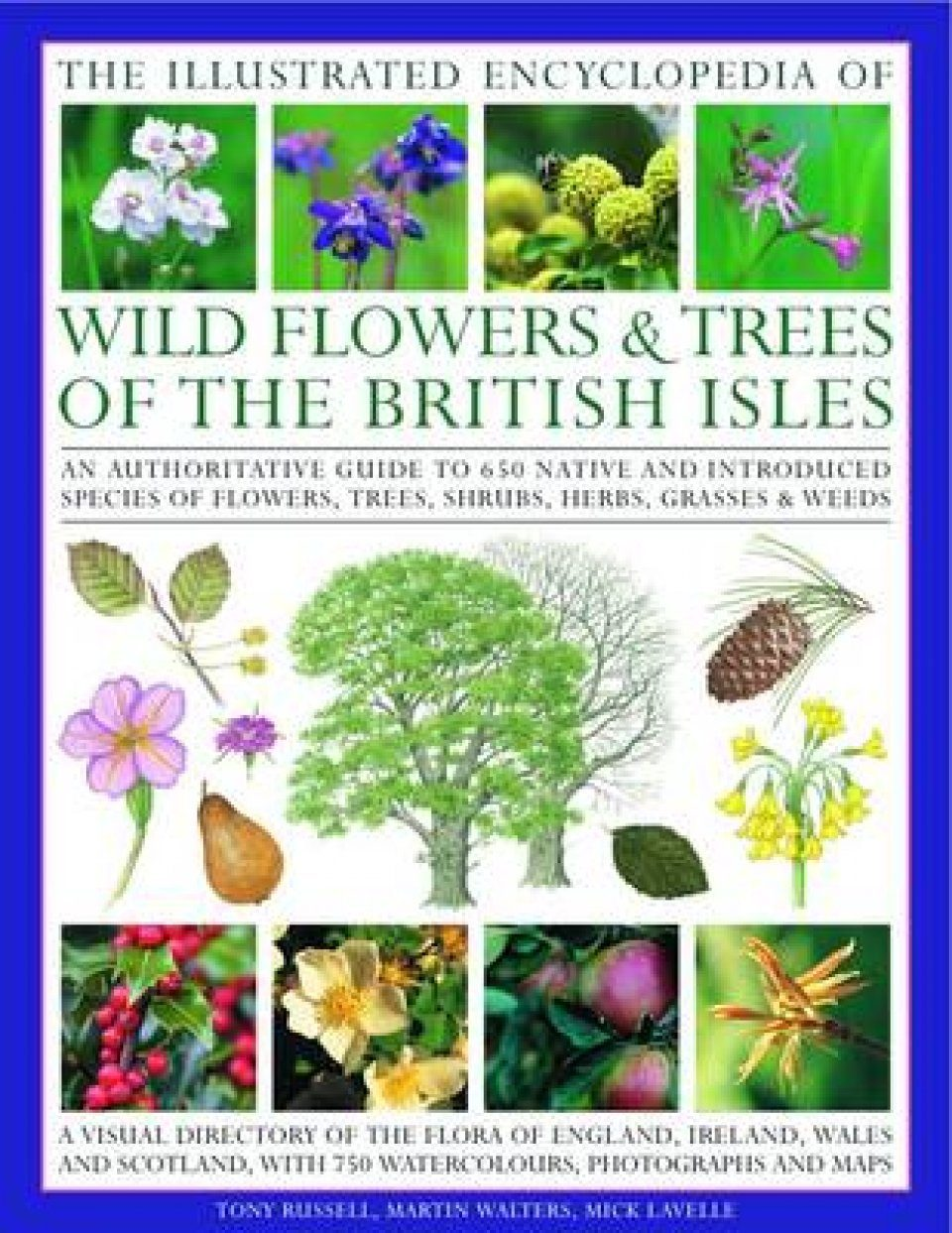 Illustrated Encyclopedia of Wild Flowers and Trees of the British Isles