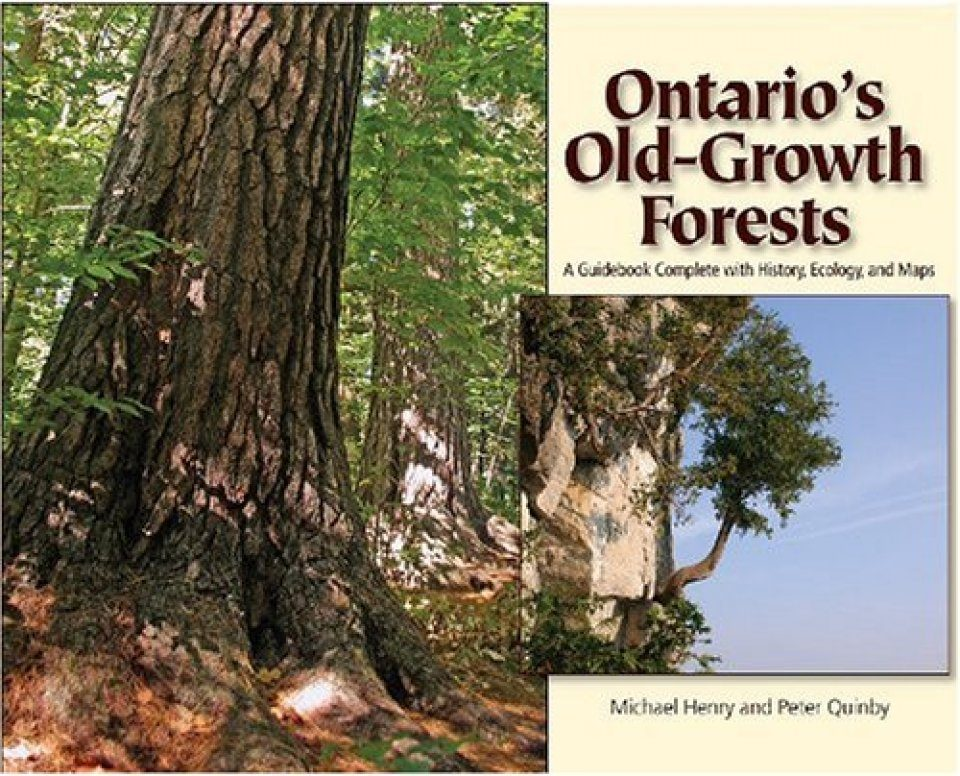 Ontario's Old-Growth Forests