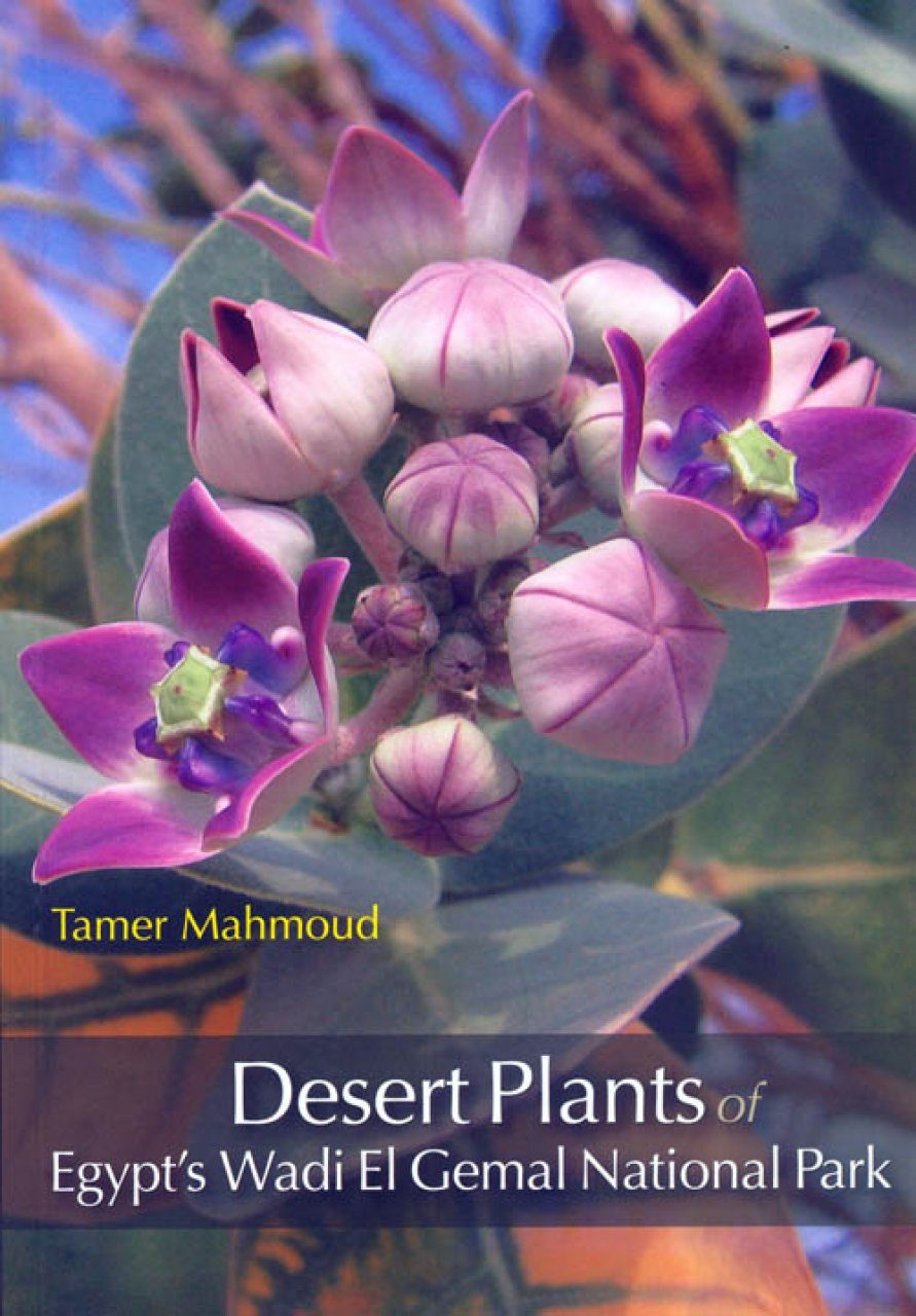Desert Plants of Egypt's Wadi El Gemal National Park