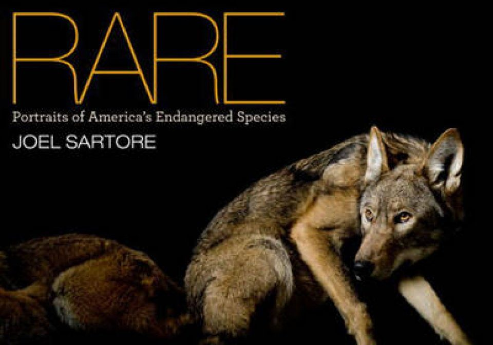 Rare: Portraits of American's Endangered Species