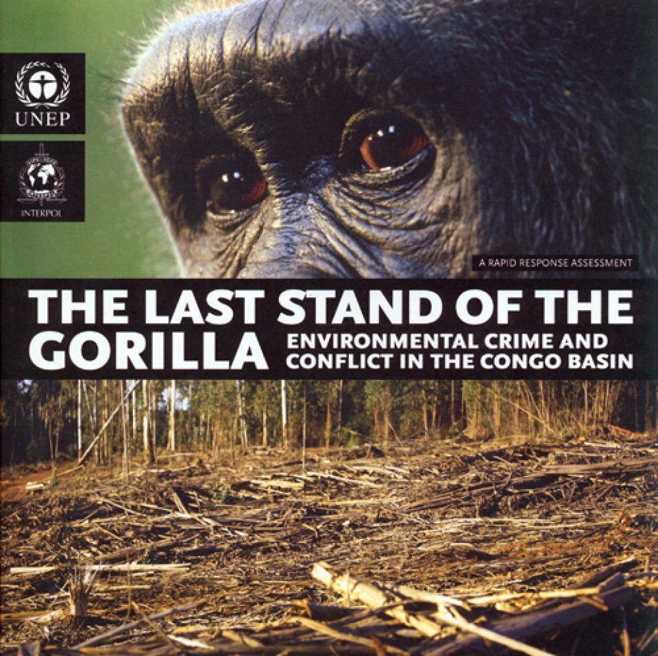 The Last Stand of the Gorilla