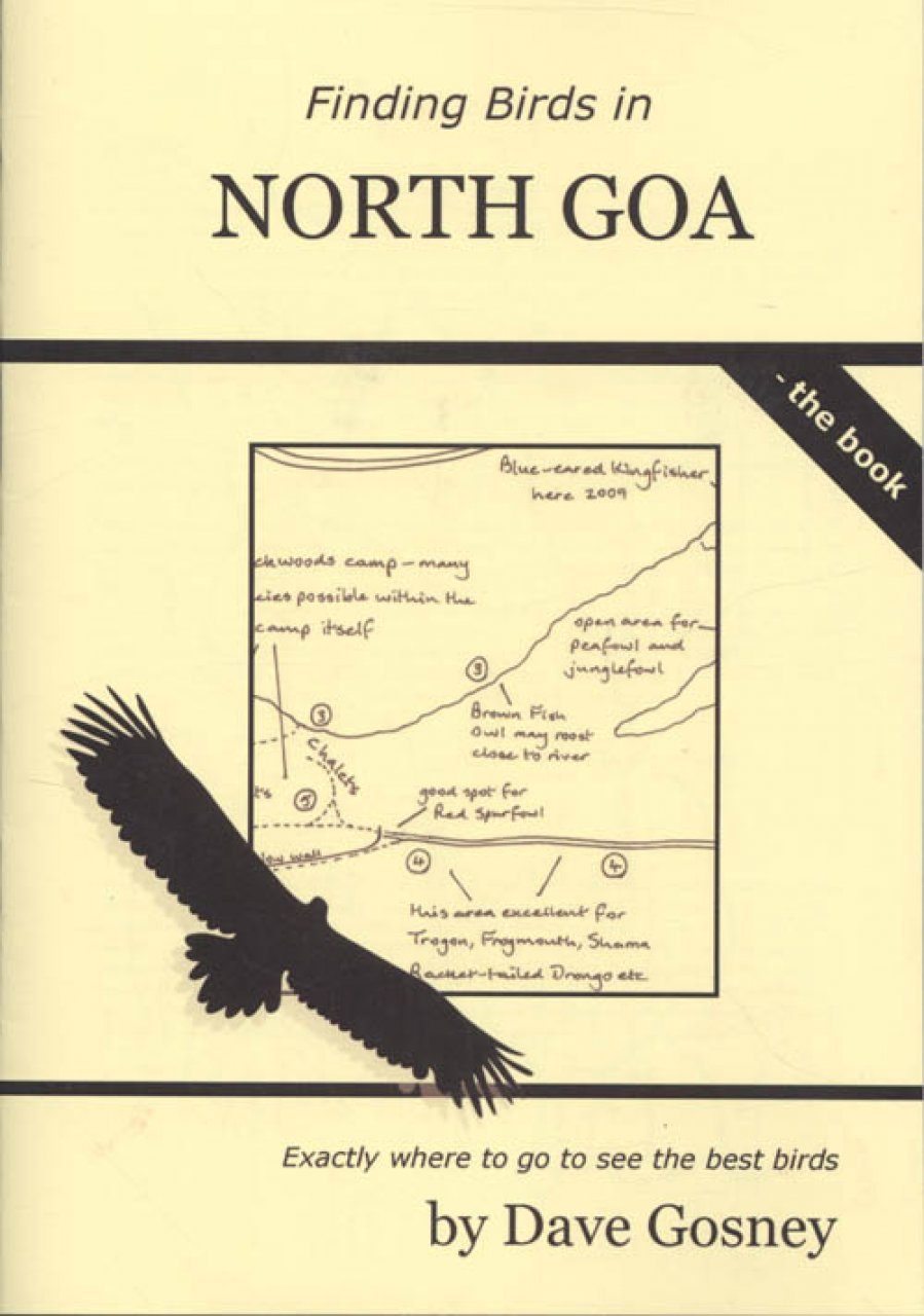 Finding Birds in North Goa