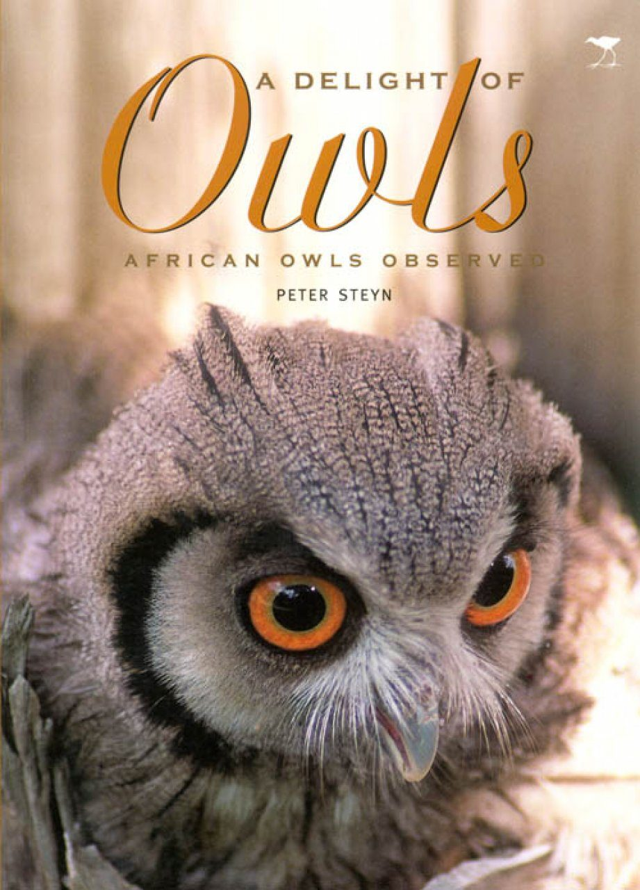 A Delight of Owls