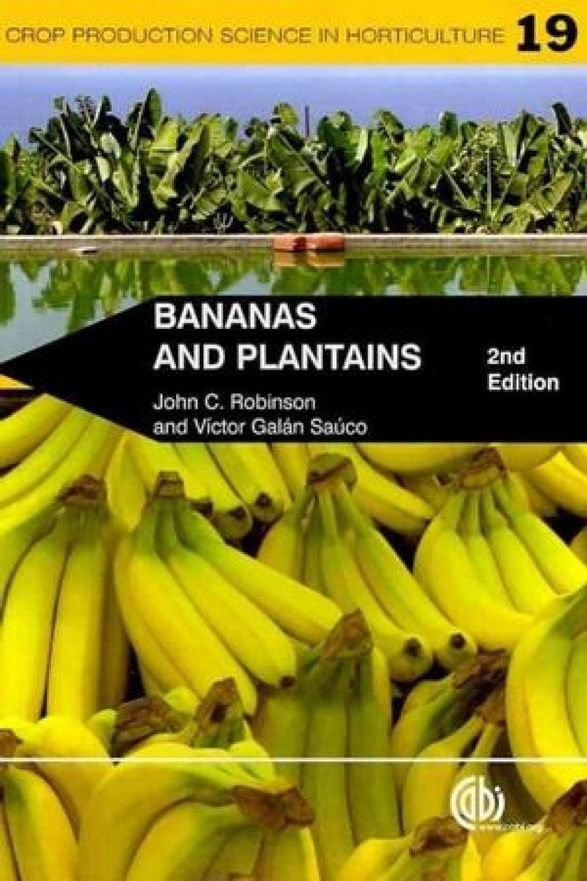 Bananas and Plantains
