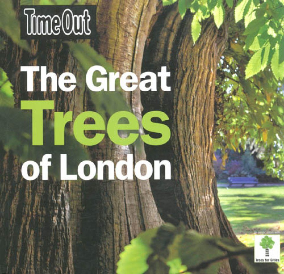 The Great Trees of London
