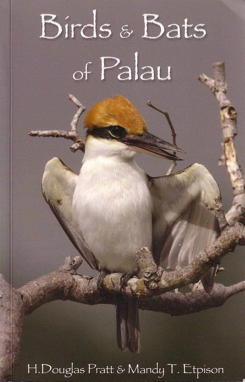 Birds and Bats of Palau