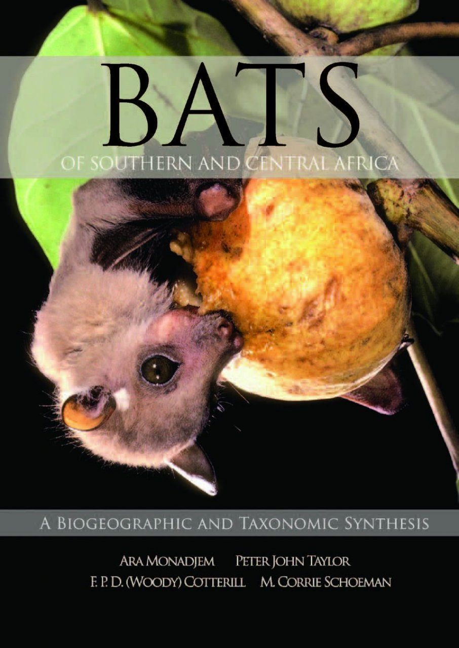 Bats of Southern and Central Africa