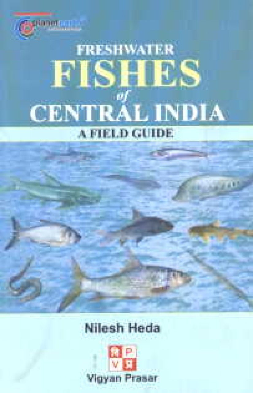 Fresh Water Fishes of Central India