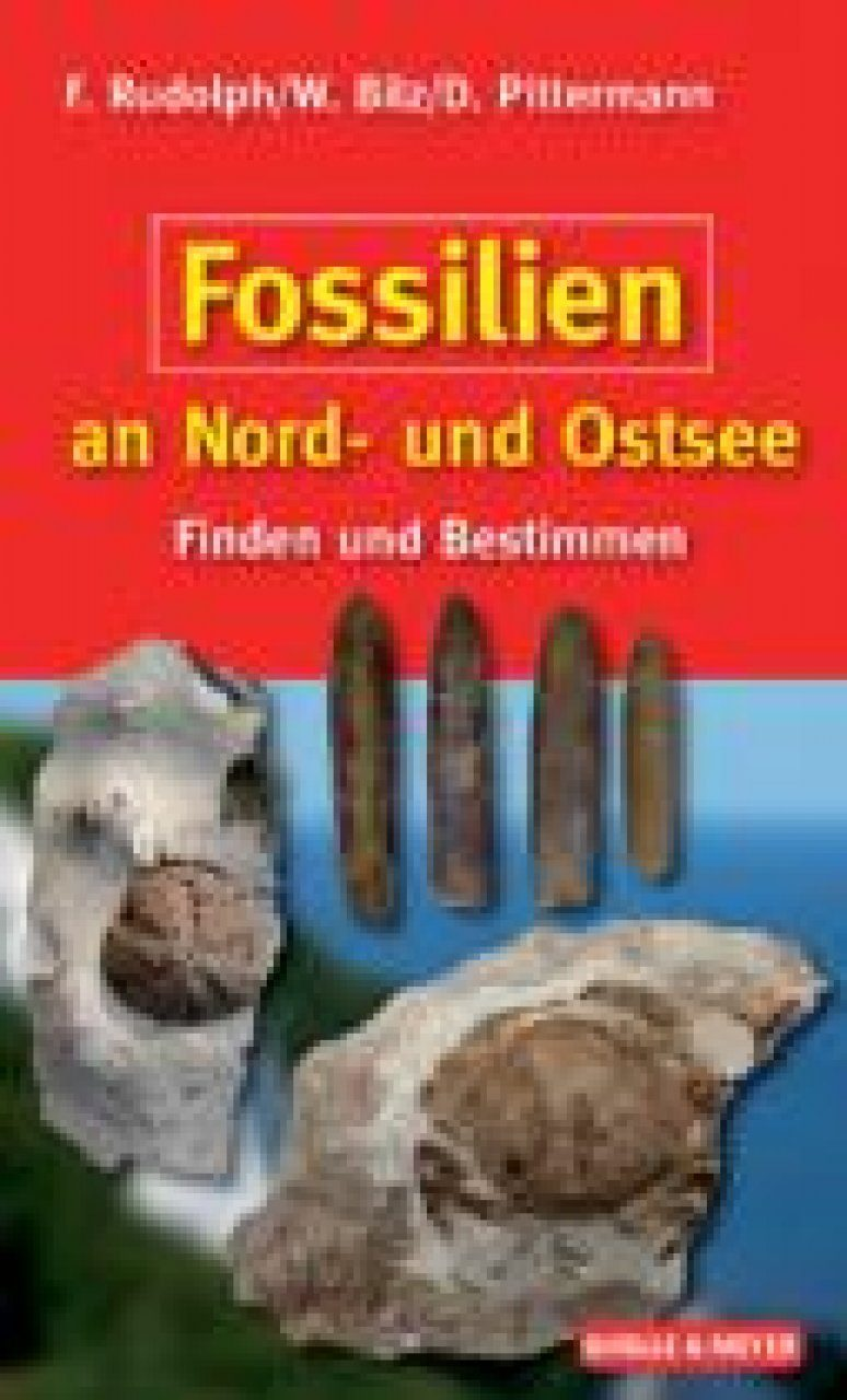 Fossilien an Nord- und Ostsee [Fossils of the North and Baltic Seas]