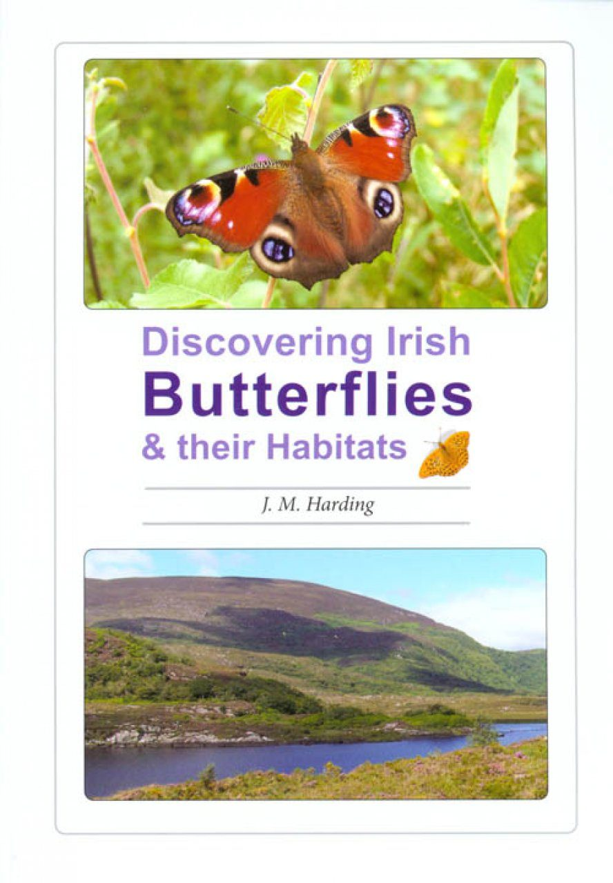 Discovering Irish Butterflies and their Habitats