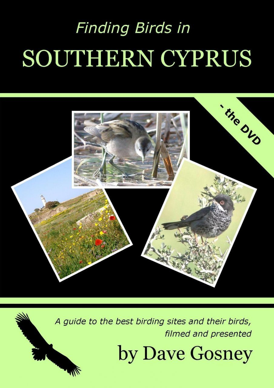 Finding Birds in Southern Cyprus - The DVD (Region 2)