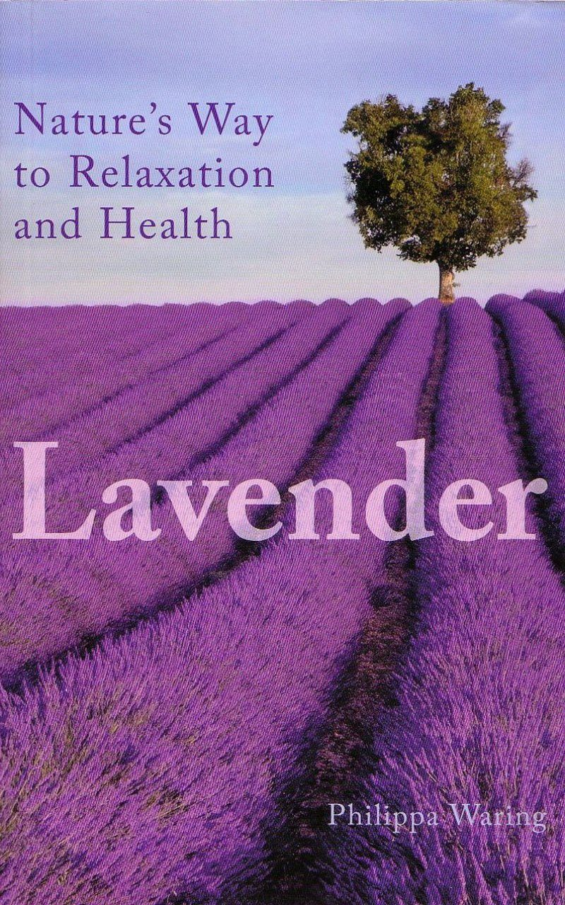 Lavender: Nature's Way to Relaxation and Health