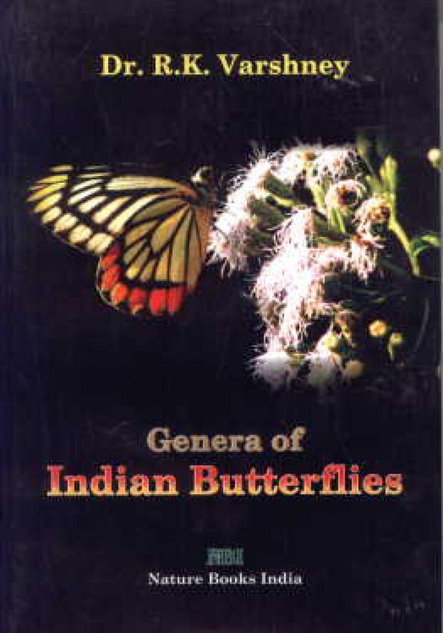 Genera of Indian Butterflies