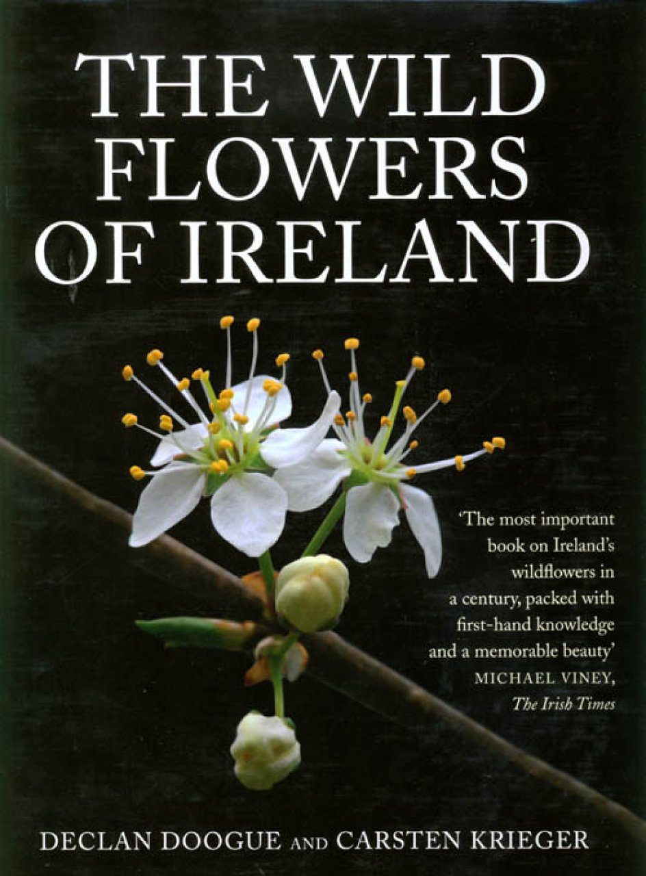 The Wild Flowers of Ireland