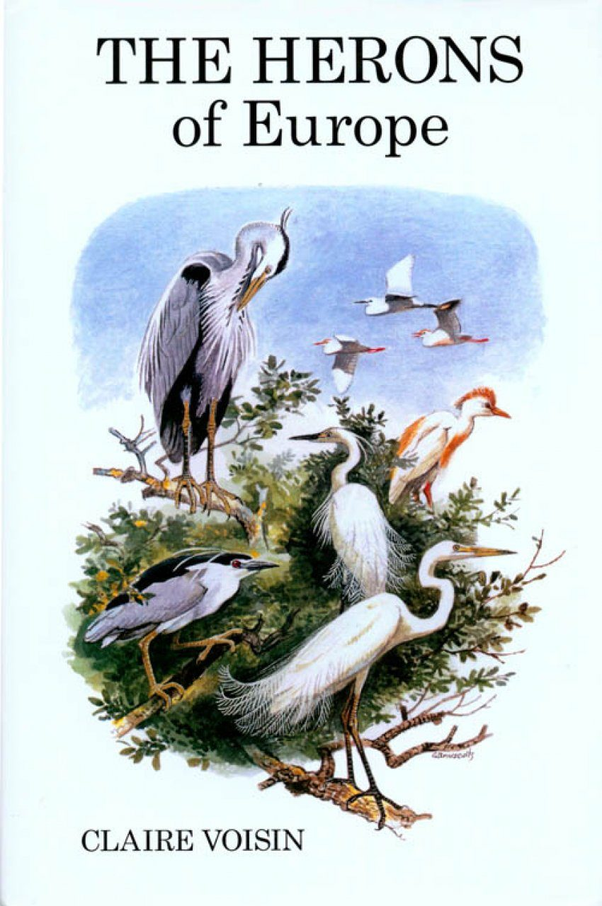 The Herons of Europe