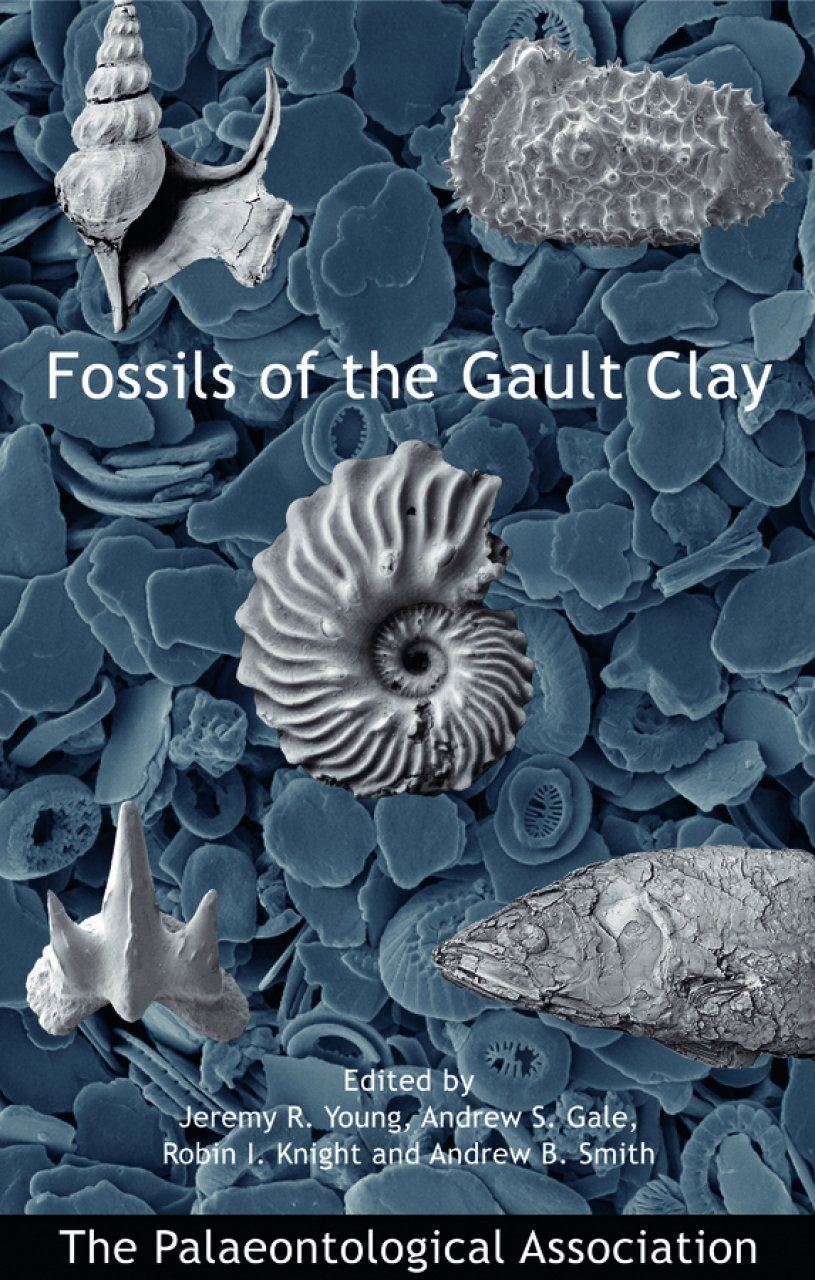 Fossils of the Gault Clay