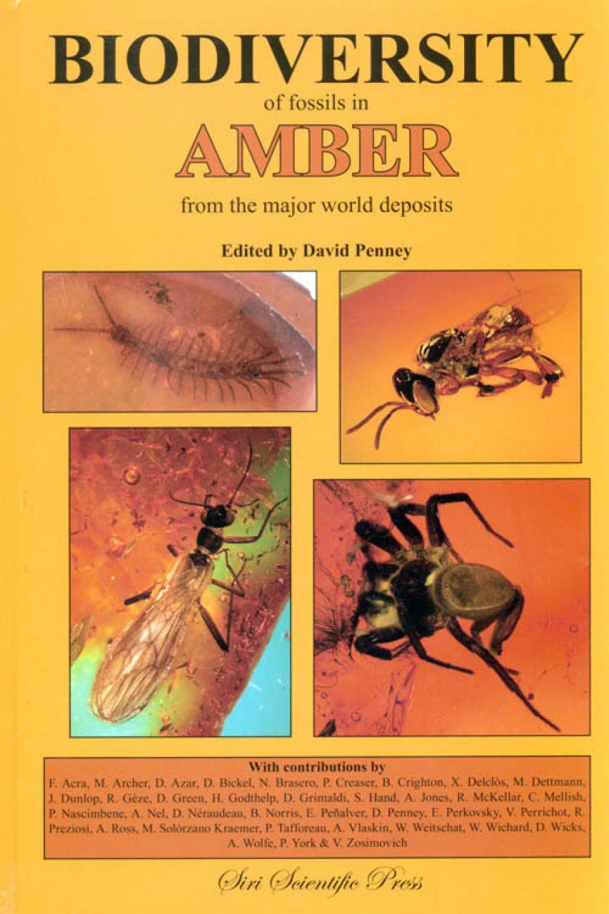 Biodiversity of Fossils in Amber from the Major World Deposits