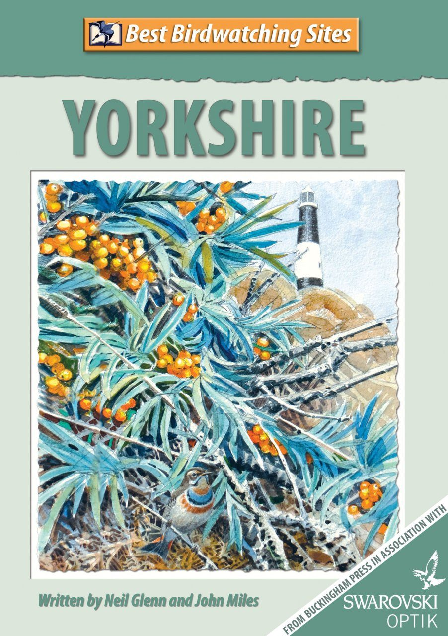 Best Birdwatching Sites: Yorkshire