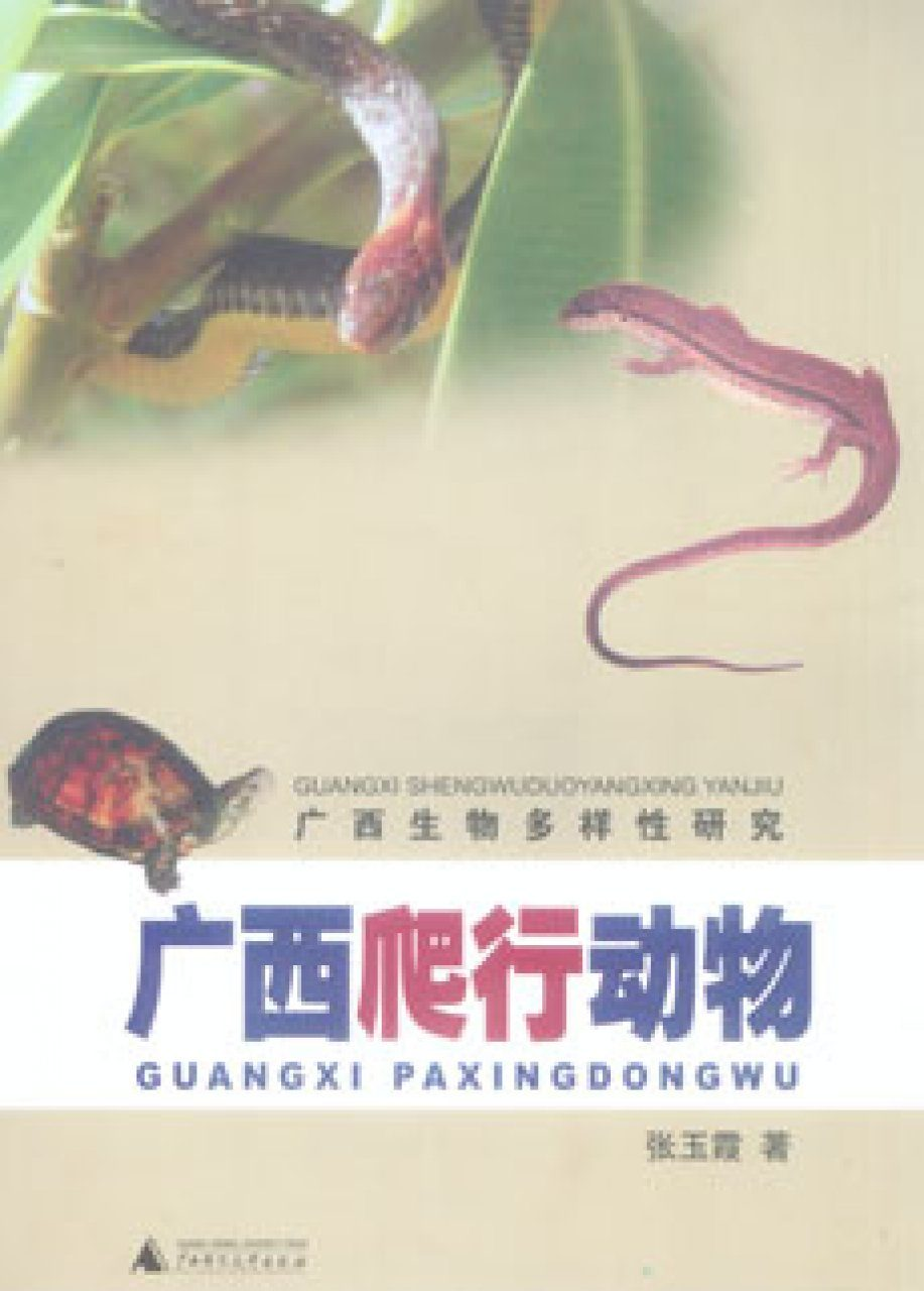 Herpetology in Guangxi [Chinese]