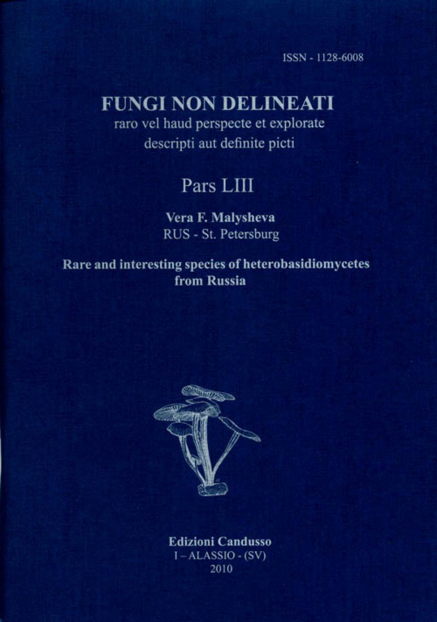 Fungi non Delineati 53: Rare and Interesting Species of Heterobasidiomycetes from Russia