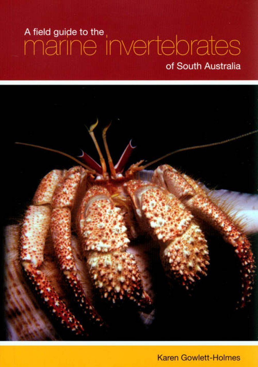 A Field Guide to the Marine Invertebrates of South Australia