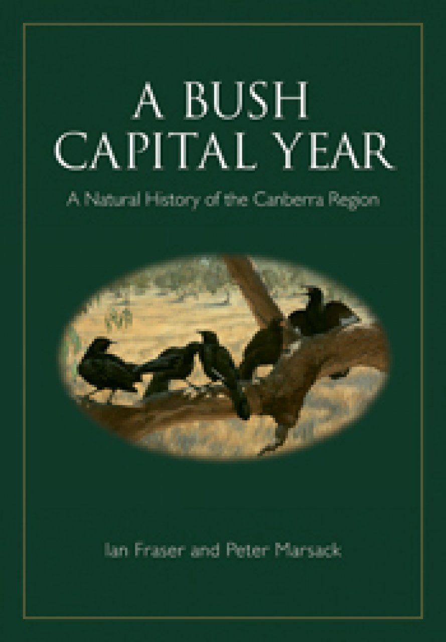 A Bush Capital Year