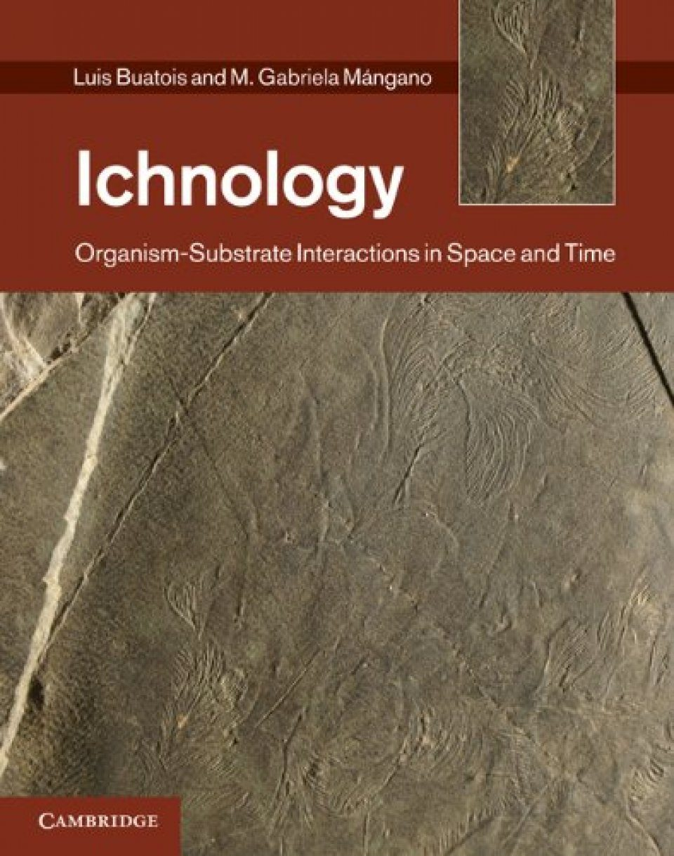 Ichnology: Organism-Substrate Interactions in Space and Time