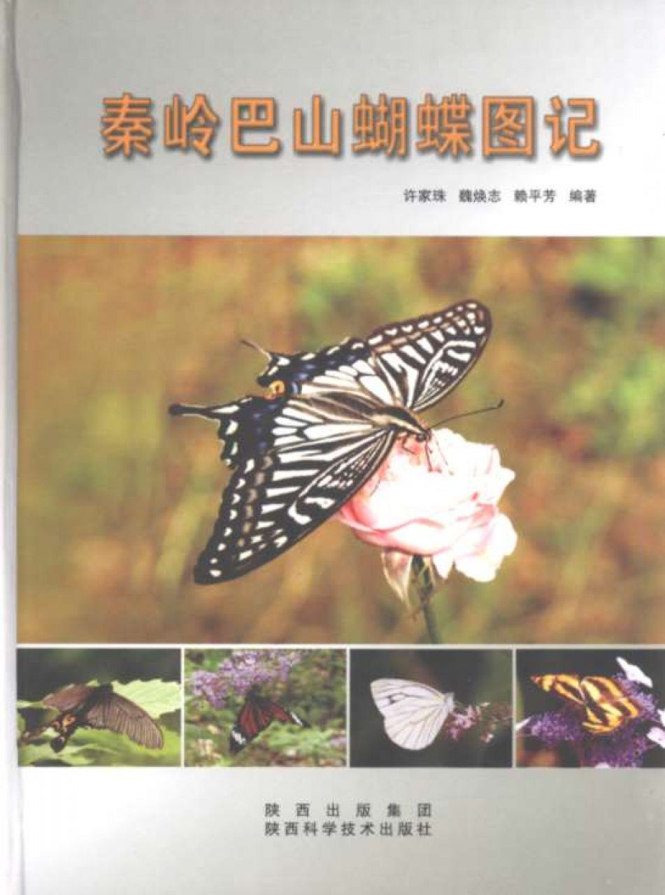 Atlas of Butterflies of MT. Qinling-Bashan in China [Chinese]