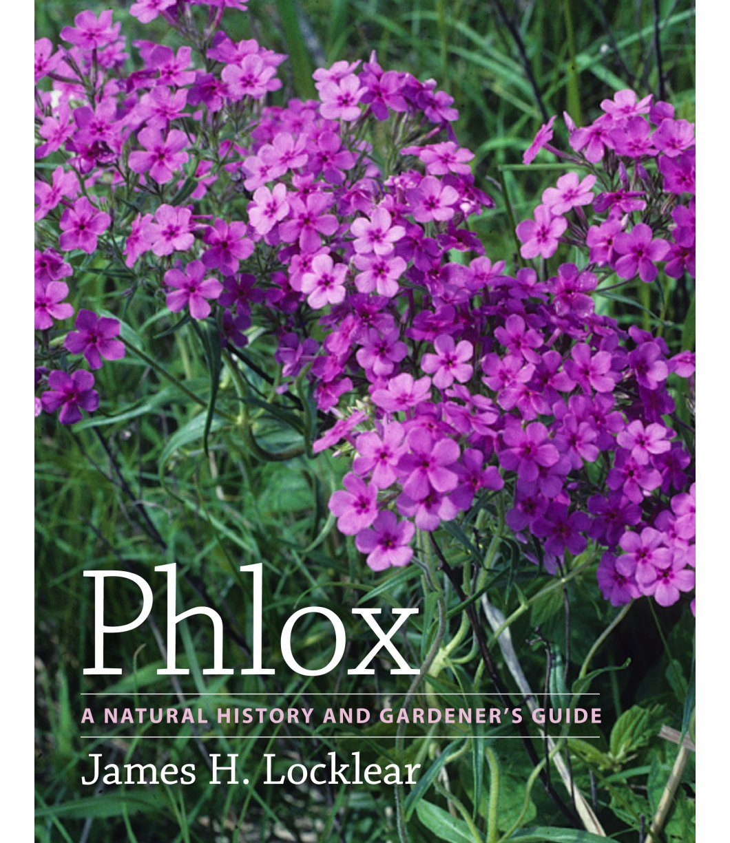 Phlox: A Natural History and Gardener's Guide