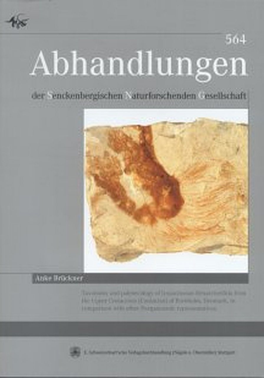Taxonomy and Paleoecology of Lyssacinosan Hexactinellida from the Upper Cretaceous (Coniacian) of Bornholm, Denmark, in comparison with other postpaleozoic representatives