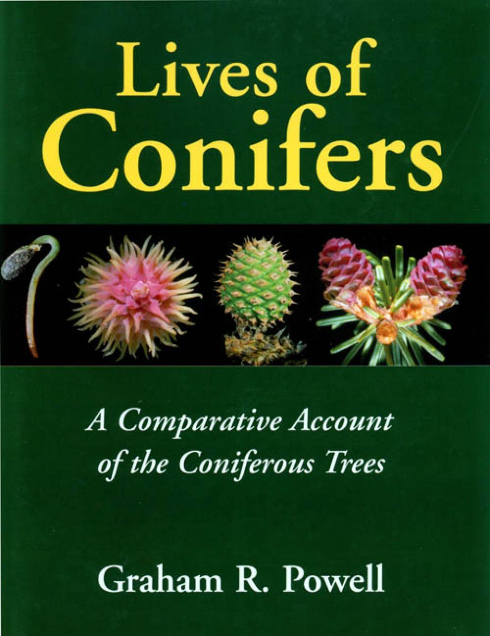 Lives of Conifers