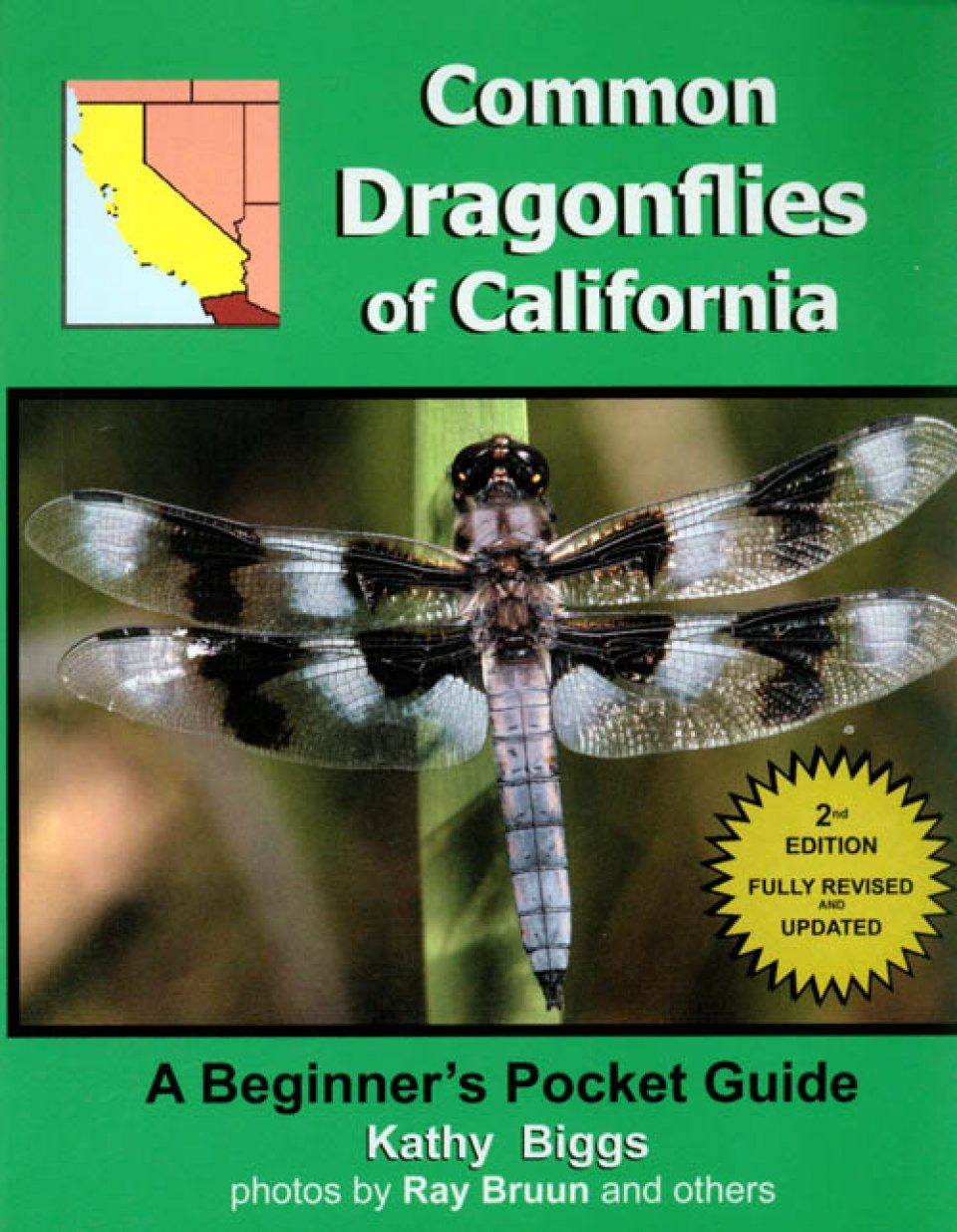Common Dragonflies of California